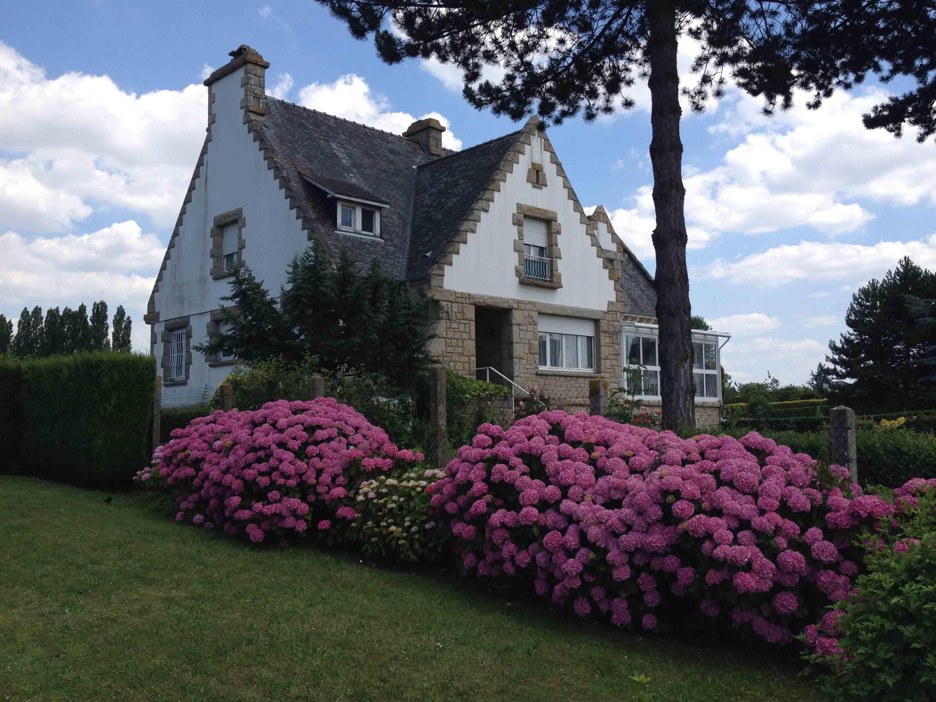 Casa hortensias
